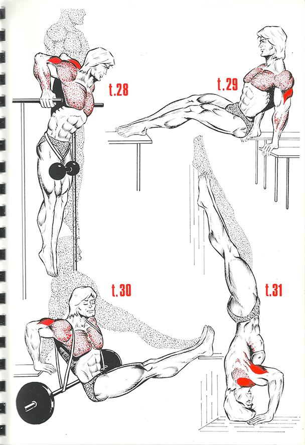 exercices de musculation 16_BLOGUS