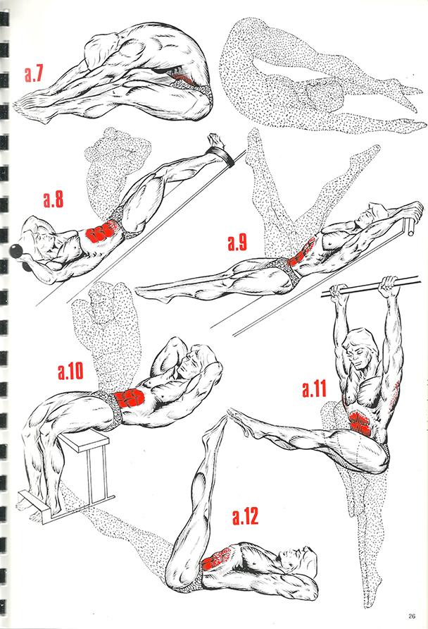exercices de musculation 18_BLOGUS