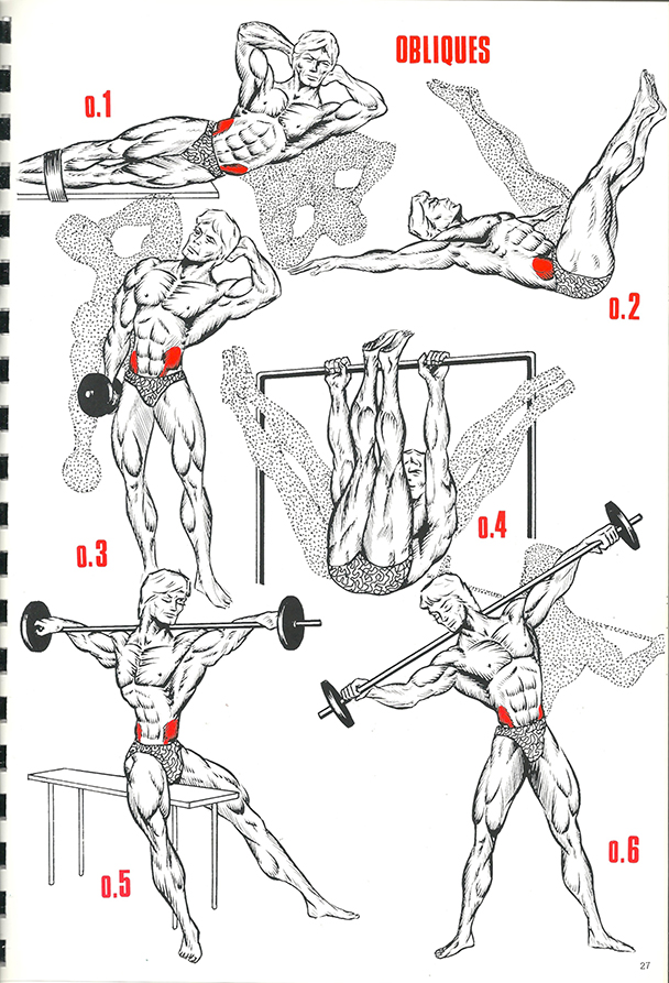 exercices de musculation 19_BLOGUS