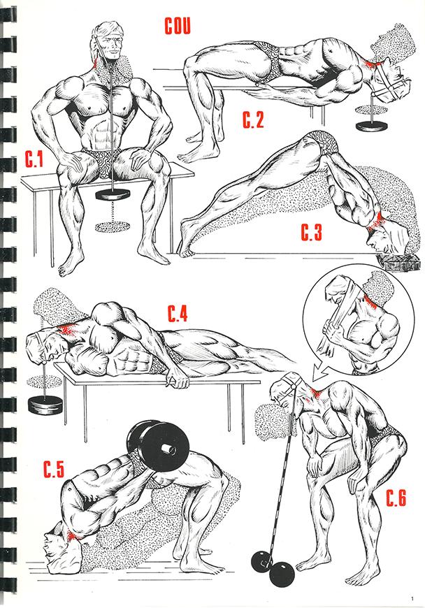 exercices de musculation 1_BLOGUS