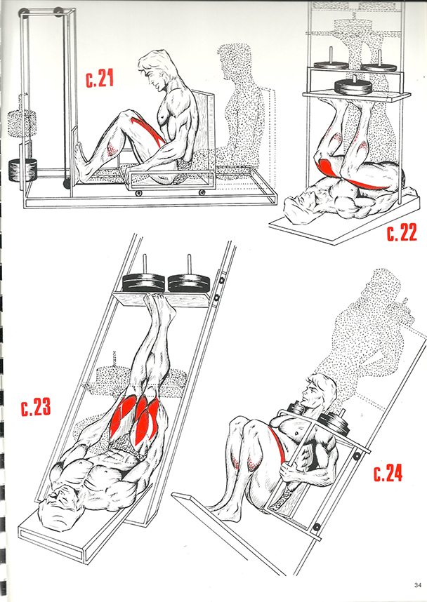exercices de musculation 23_BLOGUS