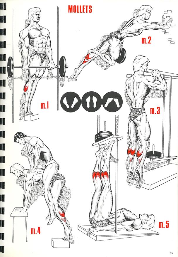 exercices de musculation 24_BLOGUS