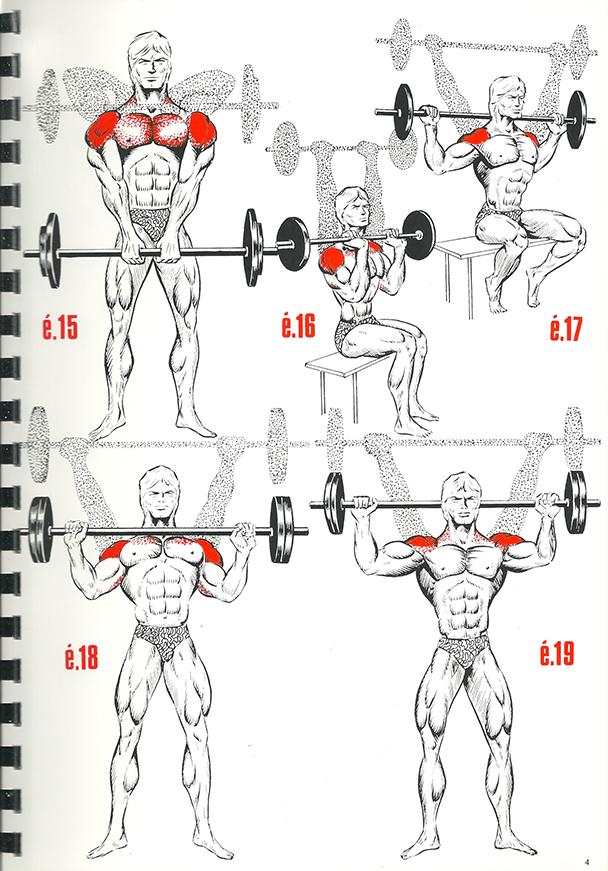 exercices de musculation 4_BLOGUS