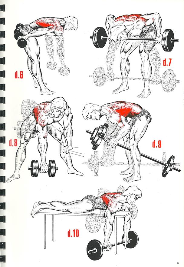 exercices de musculation 6_BLOGUS
