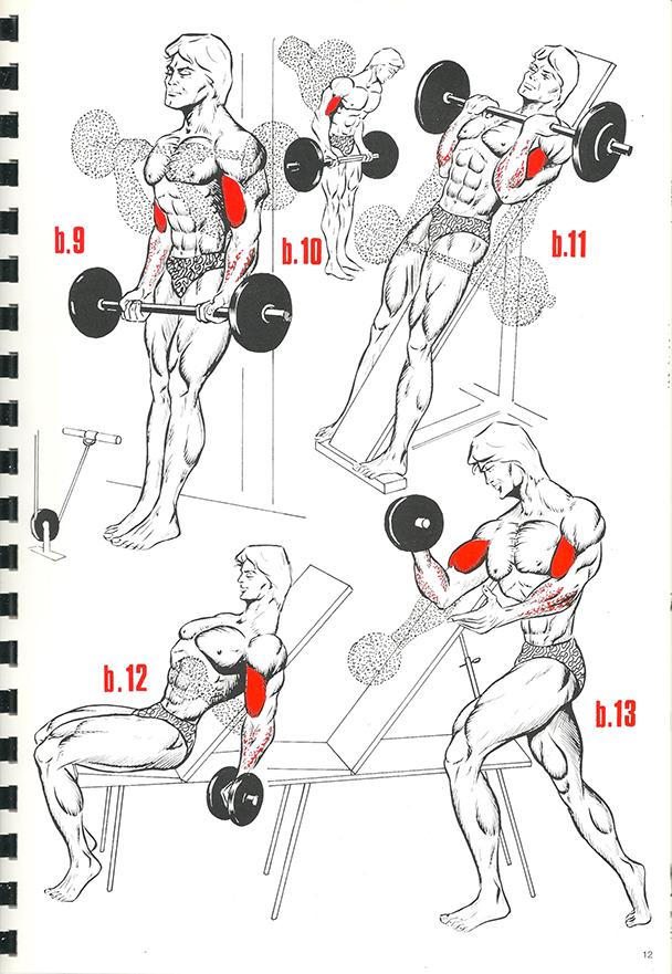 exercices de musculation 8_BLOGUS