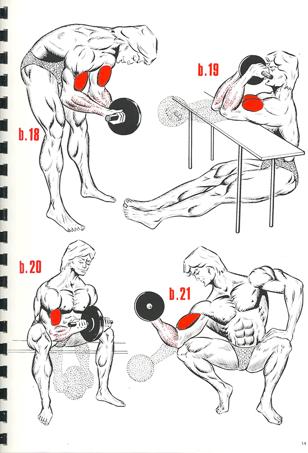 exercices de musculation 9_BLOGUS